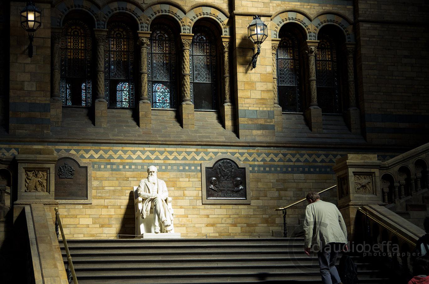 Darwin, London, Natural History Museum