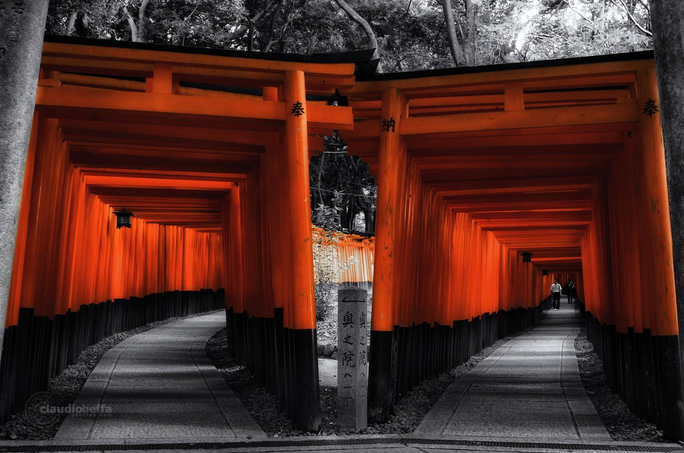 Fushimi Inari Taisha Paths Torii Kyoto