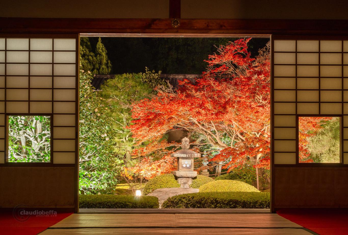 Unryuin Kyoto Lightup Garden Shoji Autumn Momiji Tsubaki Pine Lantern Japan