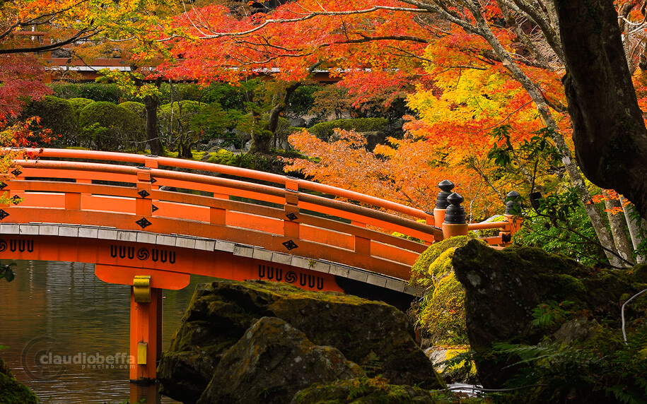 DaigoJi, Autumn, BentenDo, Kyoto, Japan, Momiji, Red, Pond, Bridge, Phoclab