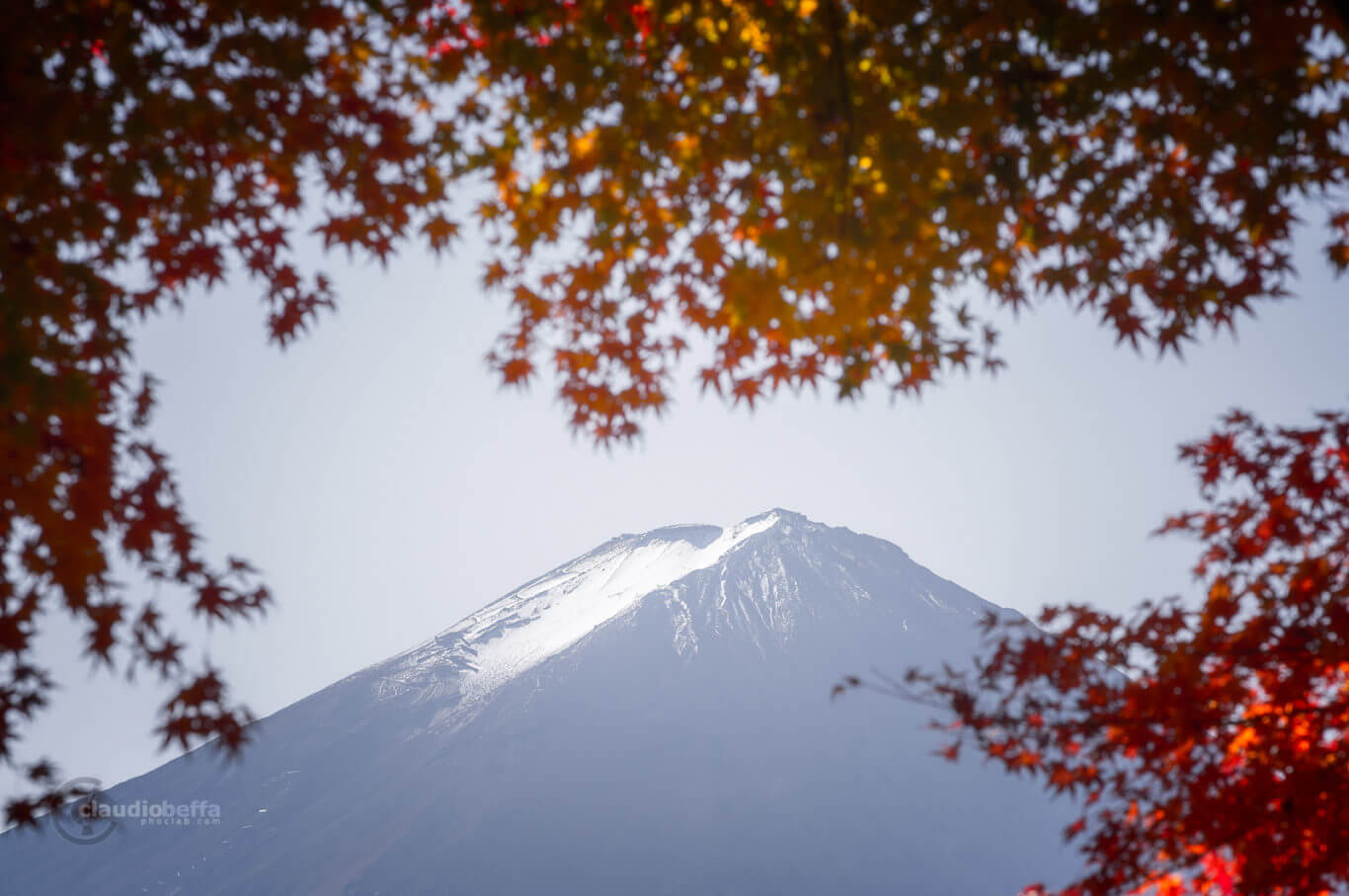 Mount Fuji, Fuji, Japan, Chubu, autumn, fall, momiji, Kawaguchiko, red, snow, Fuji peak, travel, phoclab