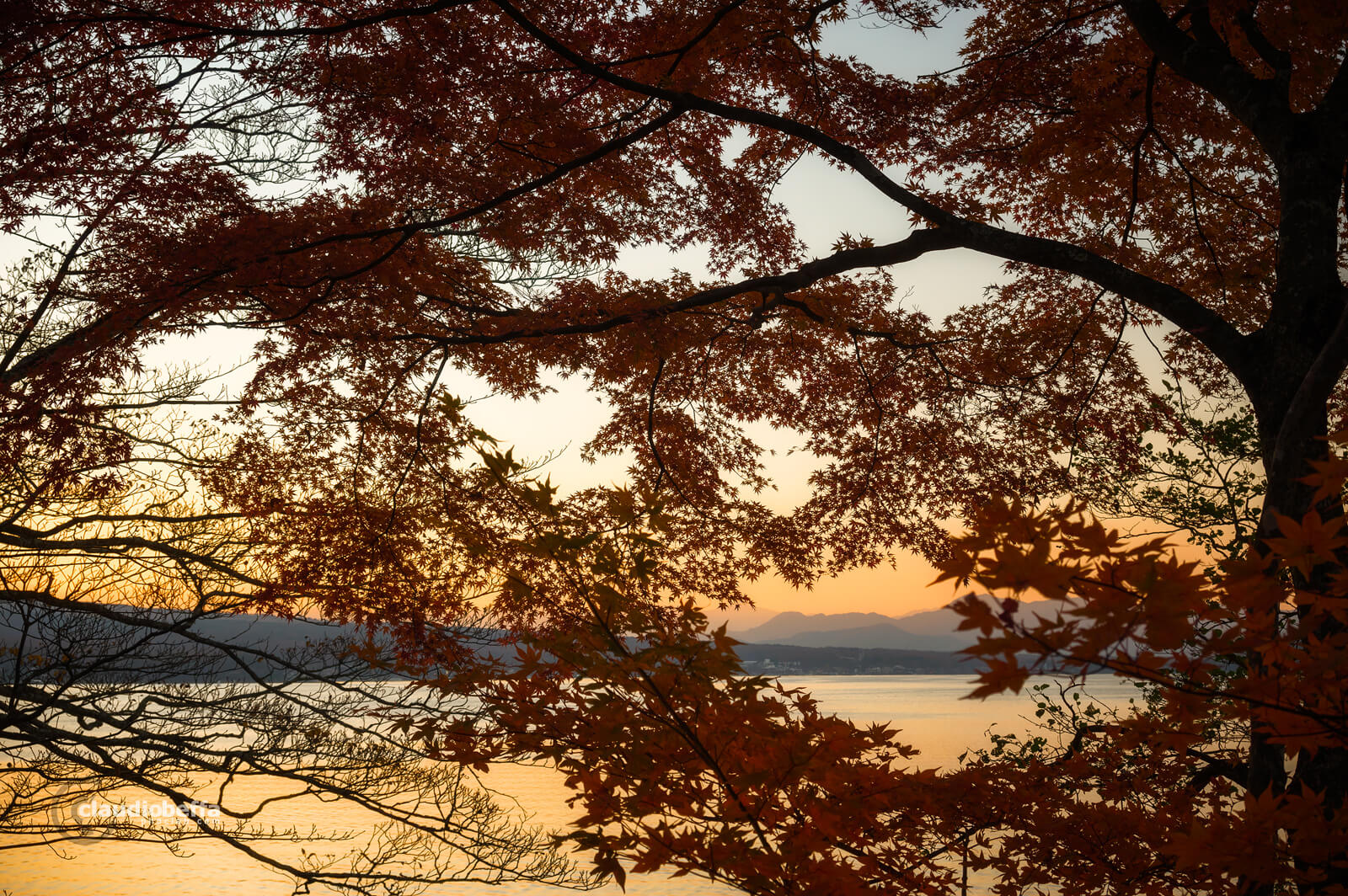 Mount Fuji, Fuji, autumn, fall, Momiji, red, leaves, trees, twilight, lake, lake yamanaka, travel, photography, phoclab
