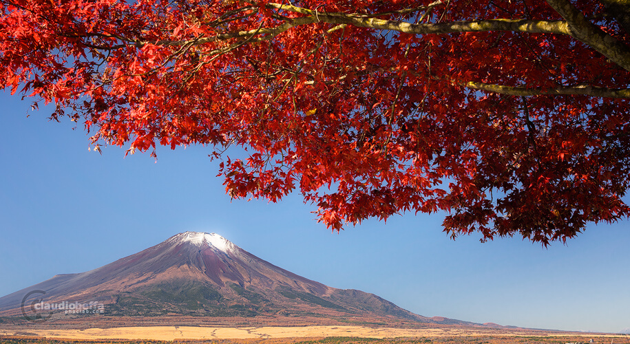 Mount Fuji, Mount Fuji autumn, Japan, Chubu, autumn, fall, momiji, red, travel, phoclab
