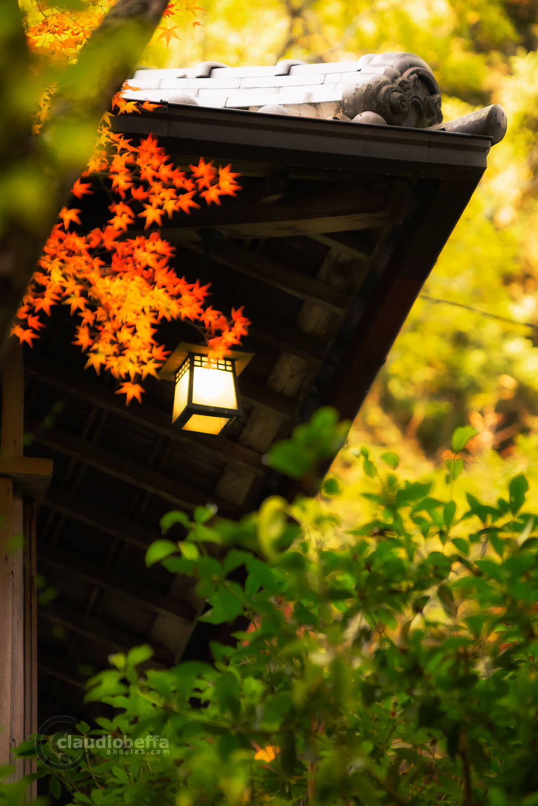 Miyajima, Miyajima autumn, Momijidani, lantern, light the fire, Japan, Hiroshima, autumn, fall, momiji, island, forest, travel, photography, phoclab