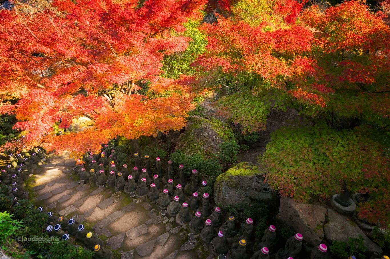 Miyajima, Miyajima autumn, Momijidani, Japan, Hiroshima, autumn, fall, jizo, hundred jizos, momiji, forest, travel, photography, phoclab