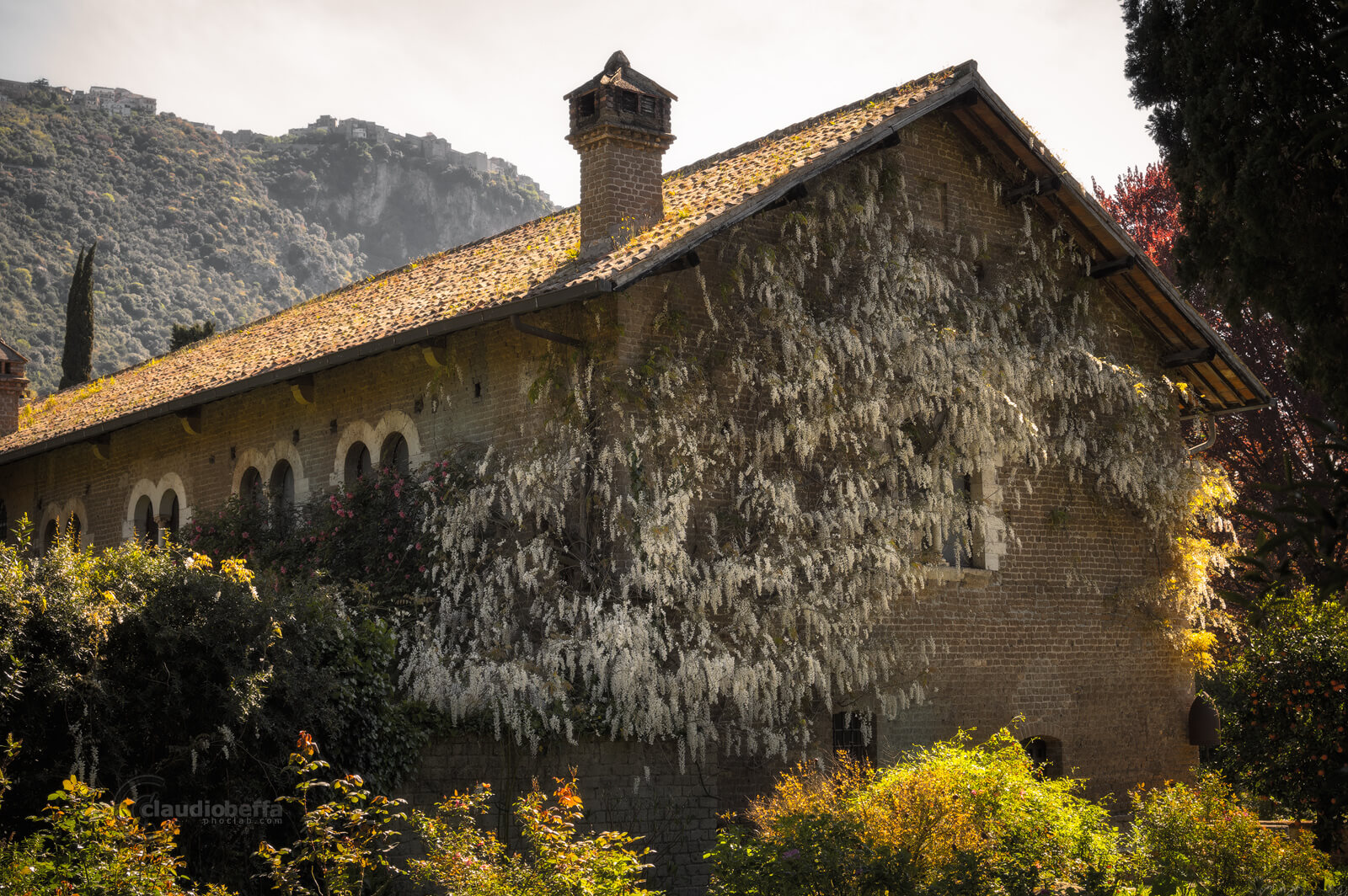Garden of Ninfa, Garden, Ninfa, Italy, White Wisteria house, Wisteria, Flowers, Nature, Spring, Travel, Travel Photography, Ancient, Romantic