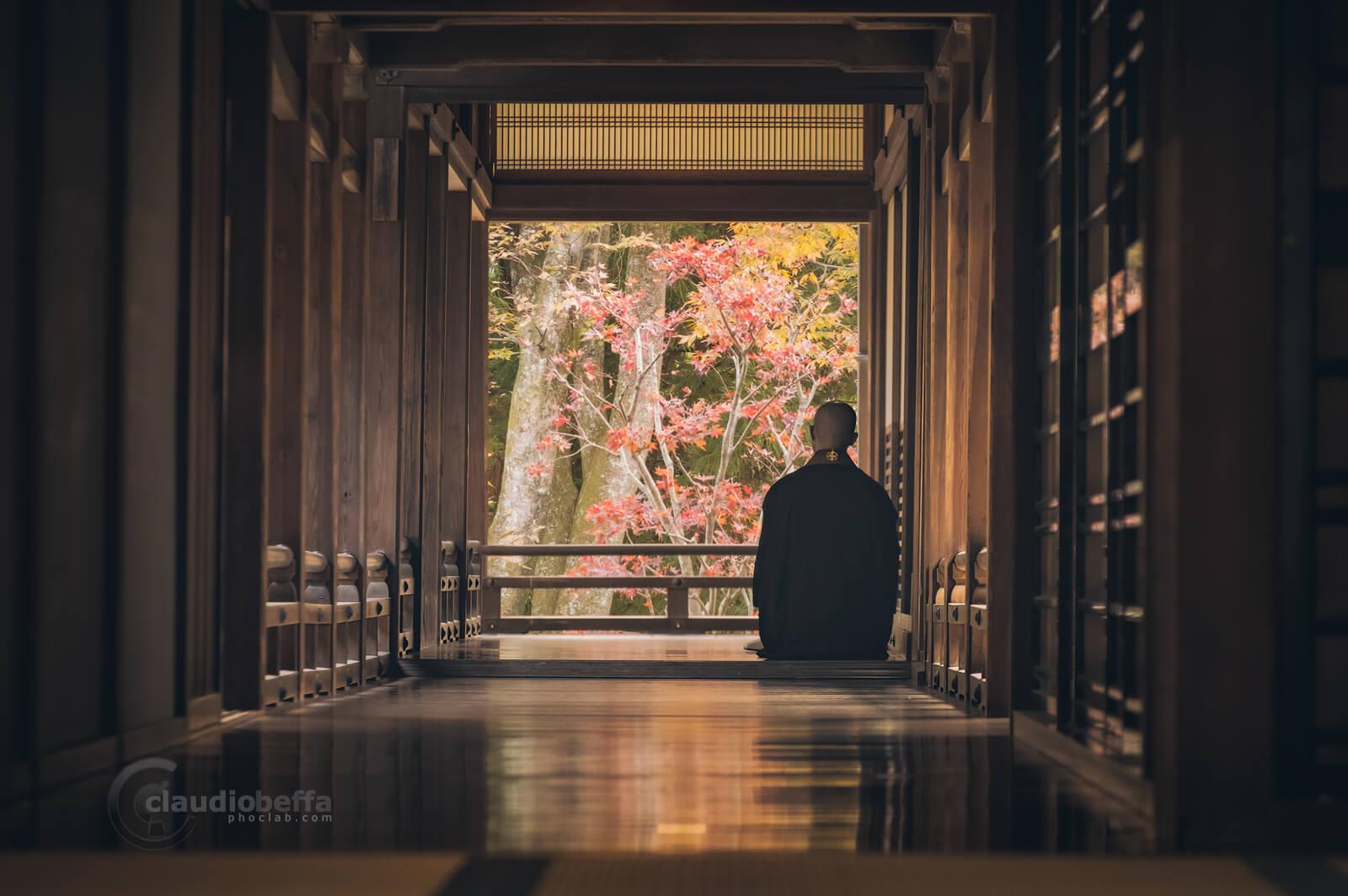 Buddhist monk contemplates Momiji, Nara, Japan, Tradition, Spirituality, Travel.