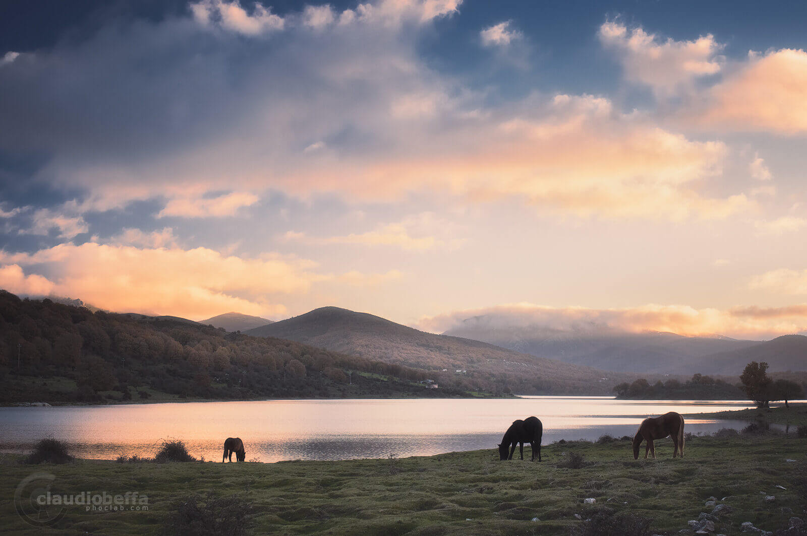 Tranquility, Sunset, Sardinia, Italy, Lake, Sky, Clouds, Horses, Grass, Mountains, Reflections, Landscape